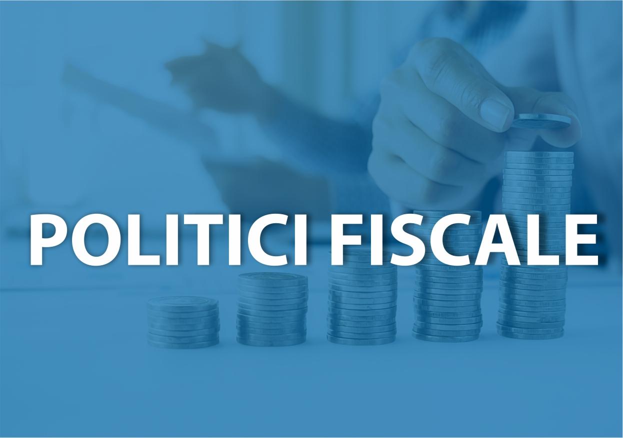 Comisii de specialitate - politici fiscale