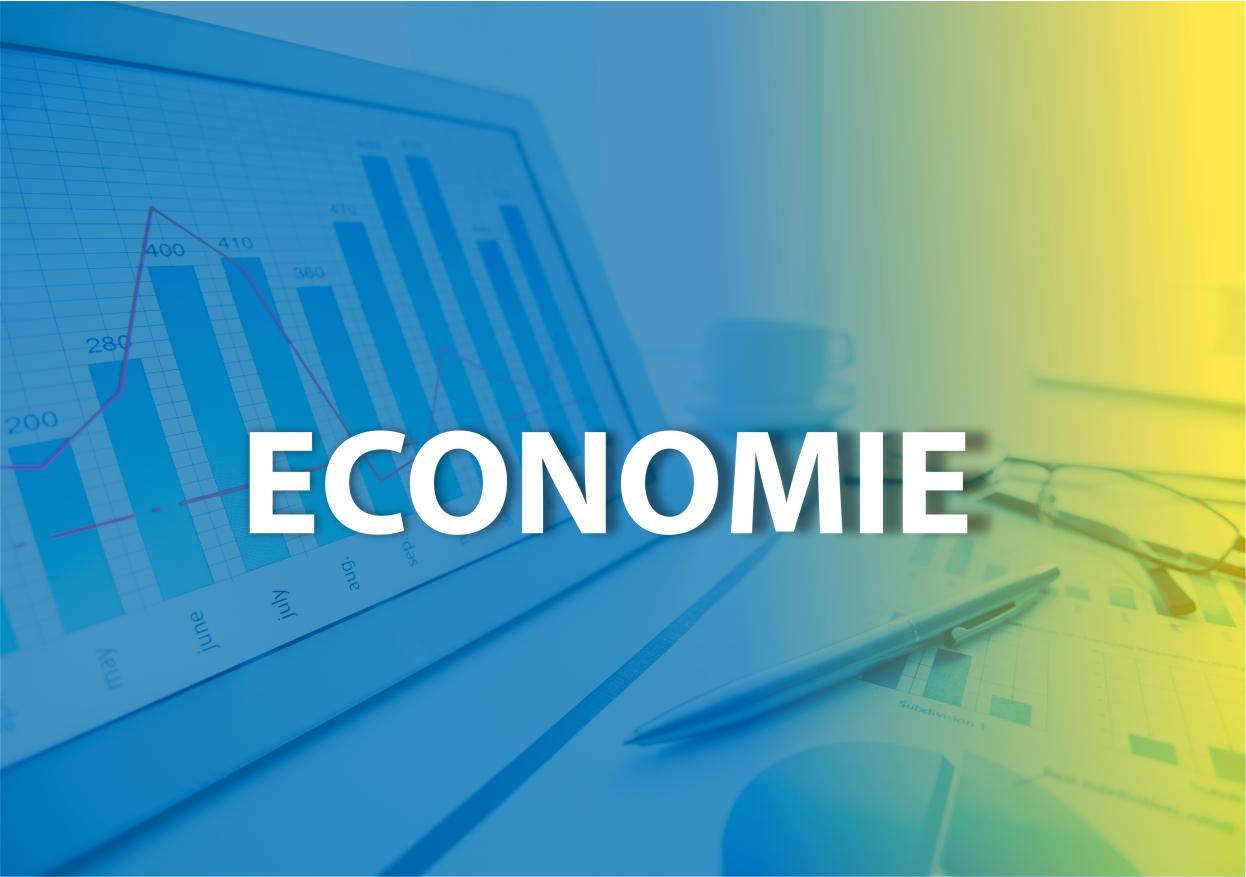 Comisia de specialitate - economie
