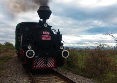 Florin Roman: Îi cer ministrului Transporturilor să ia măsuri pentru susținerea turismului feroviar de epocă