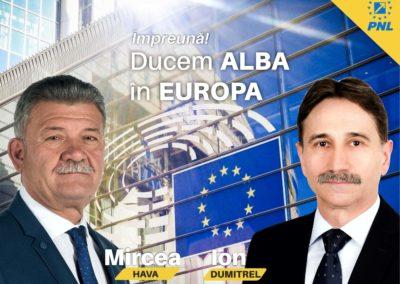 Ion Dumitrel: PNL e singurul partid care poate promova o Românie sigură și demnă în Europa