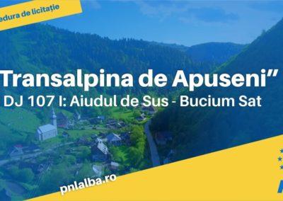 S-a finalizat licitația pentru Transalpina de Apuseni. 78 de kilometri cu piste de biciclete, stații de autobuz și peisaje montane