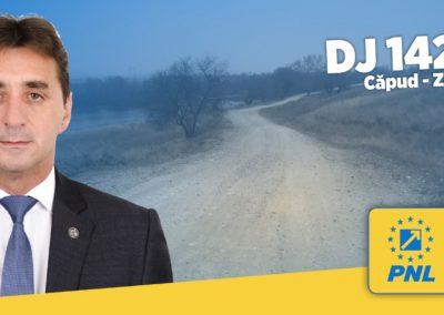 Marius Haţegan, Vicepreşedinte CJ Alba: DJ 142 L, un nou drum judeţean care va fi modernizat anul acesta