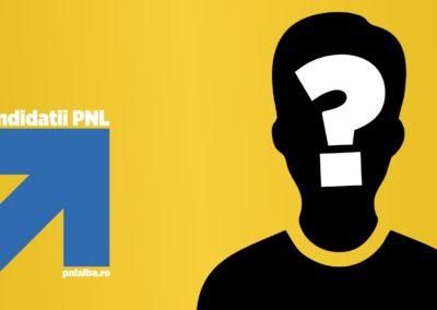 PNL Alba a început procesul de desemnare al candidaţilor pentru alegerile locale